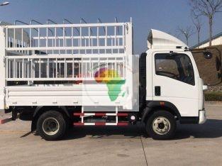 Des camions SINOTRUK Homan légers,