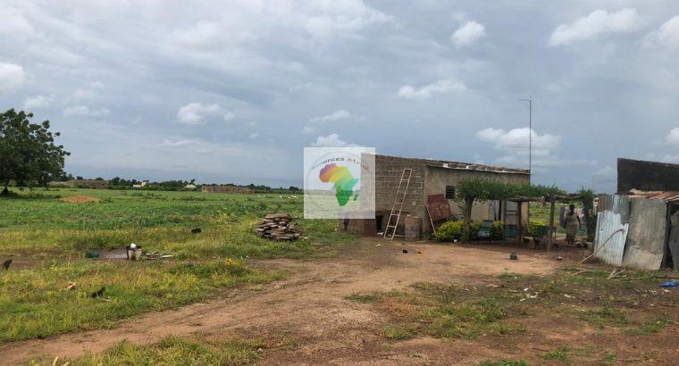 Terrains à vendre à Diatoula